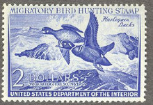 Federal Duck Stamp RW19 ( 1952 Harlequins )