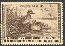 Federal Duck Stamp RW 6 ( 1939 Green - Winged Teal )