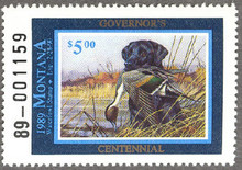 Montana Duck Stamp 1989 Governor Edition