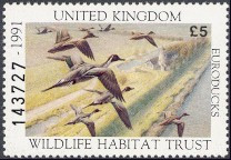 United Kingdom Duck Stamp 1991 Pintail