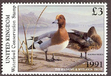 United Kingdom Duck Stamp 1991 European Wigeon