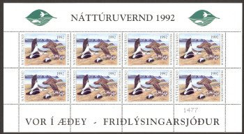 Iceland Duck Stamp 1992 Northern Eiders Full Sheet of 8 Error Stamps