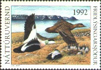 Iceland Duck Stamp 1992 Northern Eiders Missing denomination