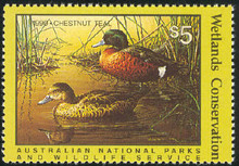 Australia Duck Stamp 1990 Chestnut Teal
