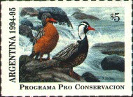 Argentina Duck Stamp 1994 95 Torrent Ducks