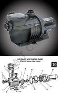 K3940 HAYWARD-NORTHSTAR PUMP 1 HP SP4007X10