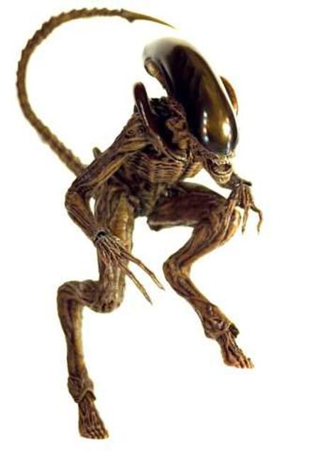 Alien 3 Movie Masterpiece Dog Alien 1/6 Collectible Figure