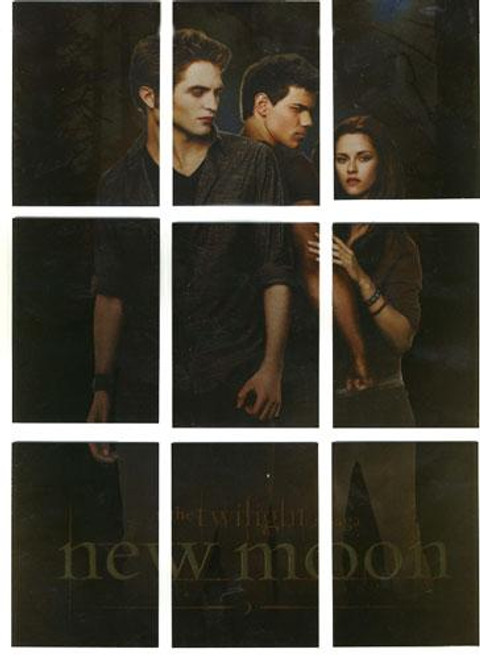 NECA Twilight New Moon Movie Poster Chase Trading Card Set