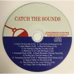 Catch the Sounds Music CD by Larry Merritt