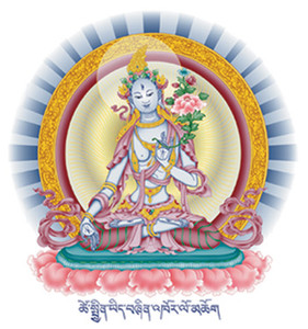 White Tara sticker