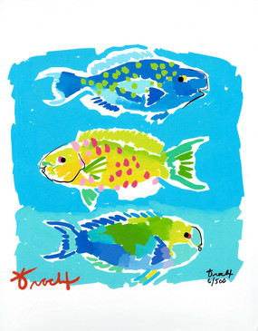 Parrot Fish Blue and Green Print