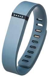 Fitbit FB401SL