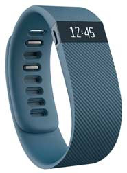 Fitbit FB404SLS