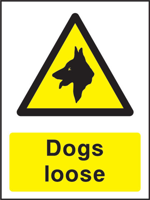Dogs Loose