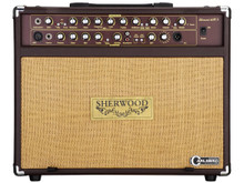 Carlsbro Sherwood 60R Acoustic Guitar Amp - 60 Watt Guitar/Vocal Amp