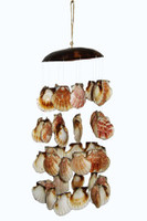 Coco Holder with Pecten Vexillium Wind Chimes
