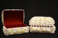 Shell Jewelry Box • White Cockles & Silver Dust