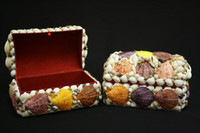 Shell Jewelry Box • Pecten Nobilis