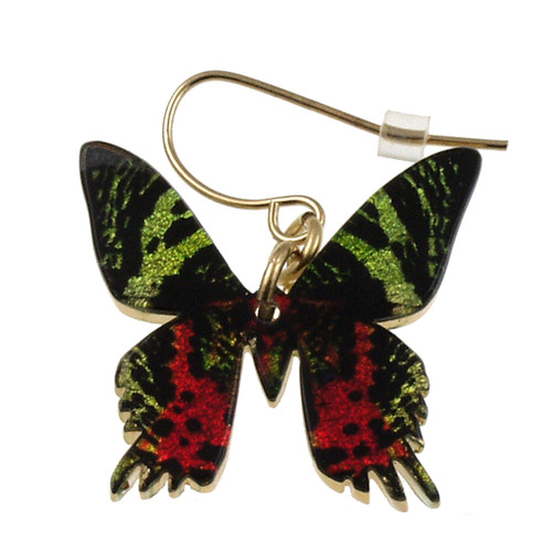 "4124-5 - Full Sunset Moth Earring 1""W"