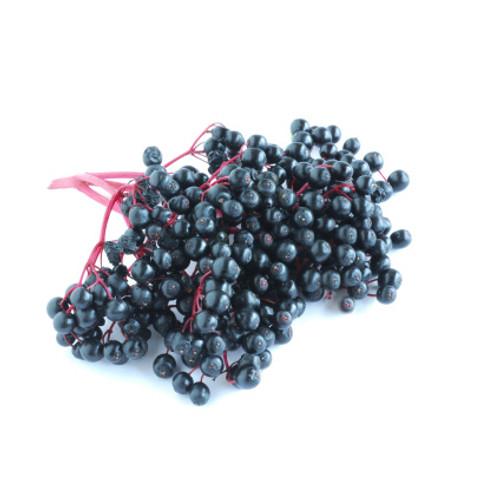 Premium Elderberry Powder