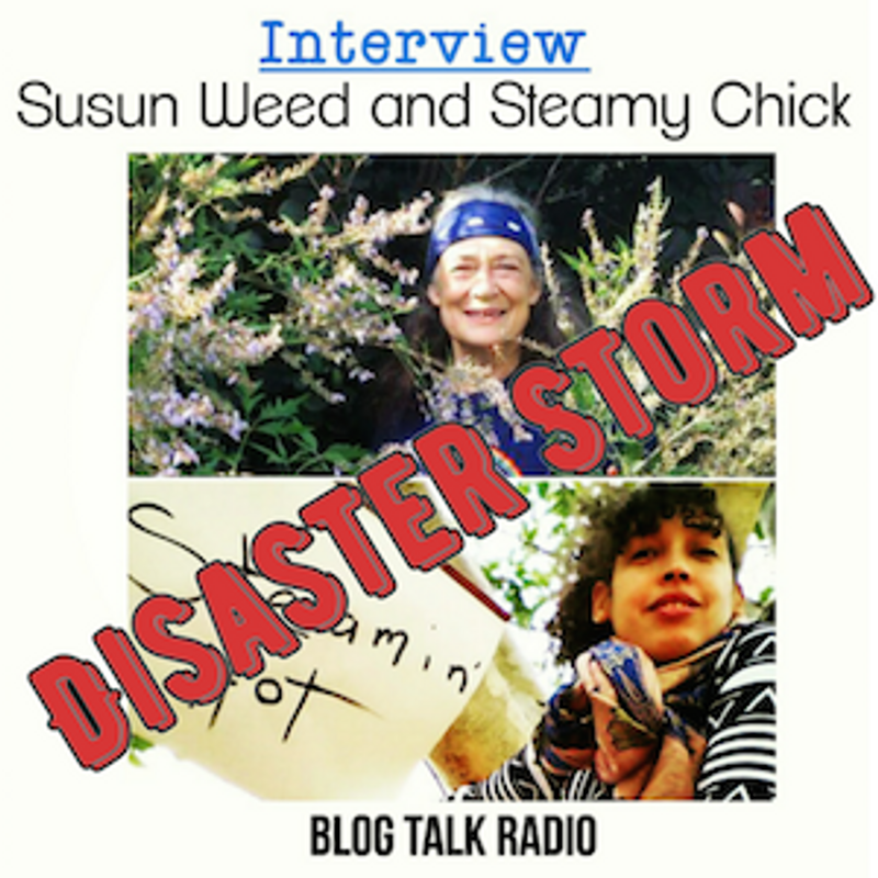 Well That Was a Disaster Storm: Why Did the Susun Weed-Steamy Chick Interview Go So Wrong?