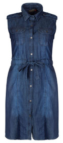 Clove Blue Denim Plus Size Shirt Collar Sleeveless Shift Dress