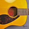 Yamaha JR1 3/4 Size Acoustic Guitar with Gig Bag