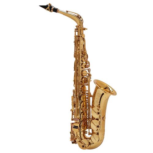 Selmer Paris Professional Model 52JGP Alto Saxophone, Gold Plated