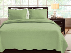 Serenity Aloe Quilt SET - Full/Queen