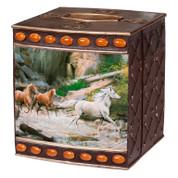 Horse Canyon - Tissue Box