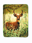 Deer Standing Blanket Throw from Shavel