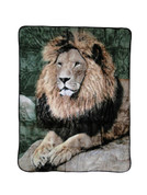 Mighty Lion Blanket Throw from Shavel
