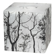 Sylvan Trees Tissue Box Cover from Creative Bath