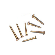BRASS Accents Replacement Screws