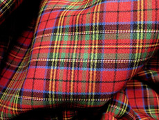 "Plaid Tartan Woven Cotton Fabric 44""W - Red Blue Green"