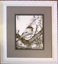Black Capped Chicadee Original Pen and Ink Drawing by Cindy Tomasik