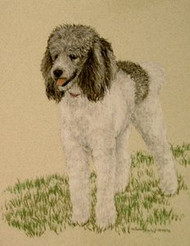 Poodle Gray and White Original Pastel Drawing by the Porter Family