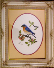 Framed Original Pastel Drawing Bluebird On Apple Branch