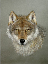 Original Pastel Drawing Gray Wolf