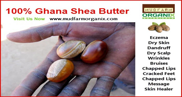 Shea Butter For Sale in The USA