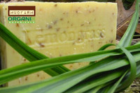 Lemongrass/Hemp Soap