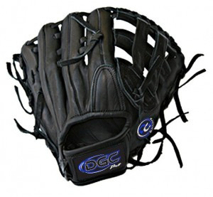 H WEB Custom Fielders Glove