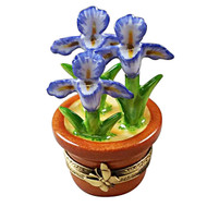 Iris Pot Rochard Limoges Box