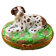 Limoges Imports Pointer Dog Limoges Box