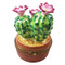 Limoges Imports Flowering Cactus In Pot Limoges Box