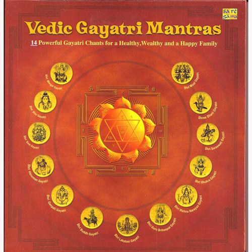 vedic mantras in hindi pdf