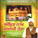 Amrit Naam Suwami Tera