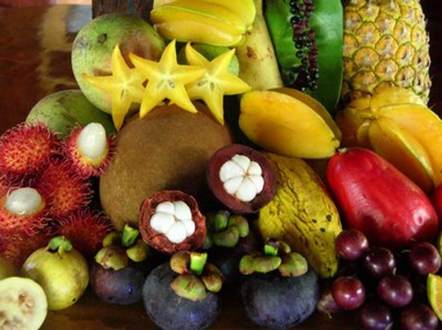 Fruity & Exotic Luxury Body Oil