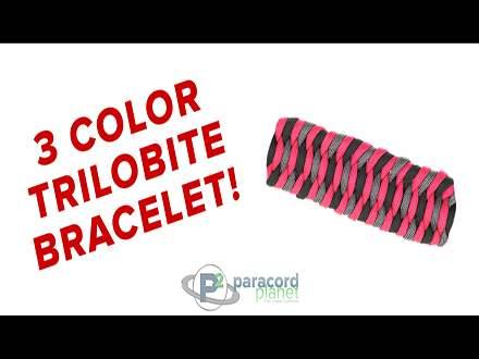 3 Color Trilobite paracord bracelet tutorial video