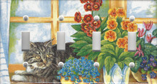 Silver Tabby Cat in Window - Quadruple Switch